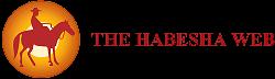 The Habesha Web Rent & Roommate Service